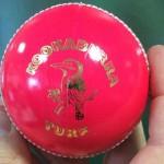 For Web Edition-Cricket begins new Innings-The Pink Kookaburra Ball