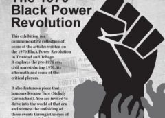 Some thoughts on 'Black Power Revolution' Anniversary