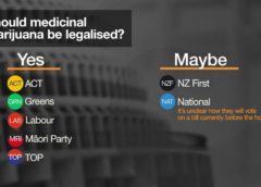 Referendum on Cannabis can be mindboggling