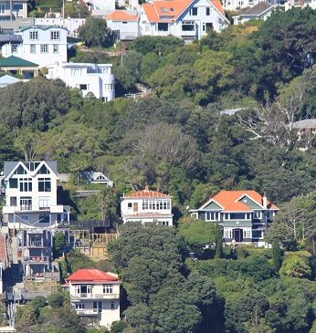 House-hunting students find novel ways in Wellington