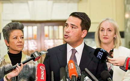 Simon Bridges wants Treasury Secretary to resign